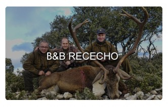 ReivaxFilms: BYB RECECHO TEASER