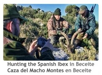 ReivaxFilms_Caza del Macho Montes en Beceite