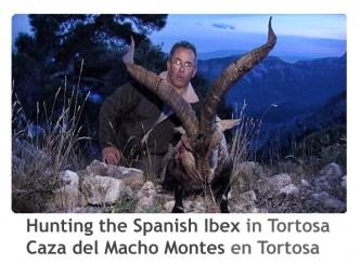 ReivaxFilms_Caza del Macho Montes en Tortosa