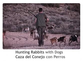 ReivaxFilms_Caza del conejo con perros