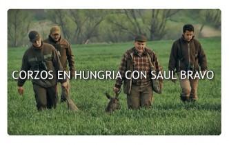 ReivaxFilms: CORZOS EN HUNGRIA CON SAUL BRAVO TEASER